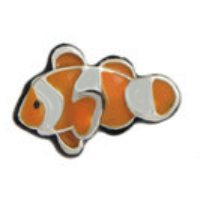 Nemo Clown Fish Charm